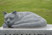 I have seen many dogs on grave markers... never a cat.
