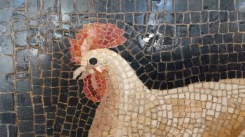 She would've liked this Roman chicken mosaic.