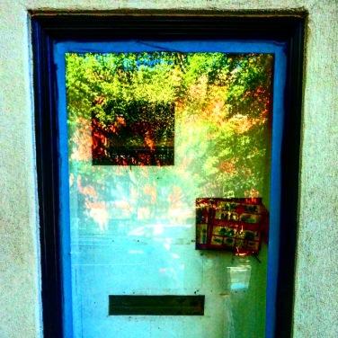 Sad window reflects trees.