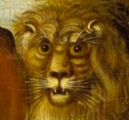 shocked lion